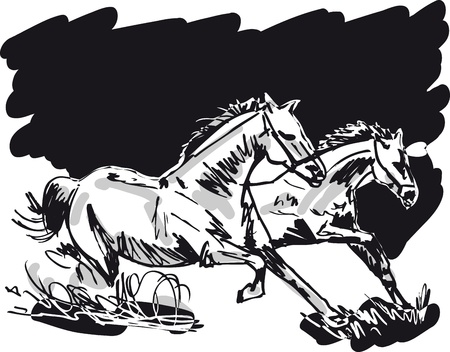 Stallion Sketch  Vector illustration  Vector