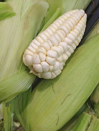 Ripe peruvian corn photo