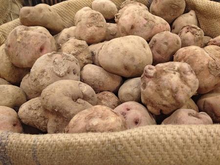 costal: Peruvian potato on jute bag Stock Photo