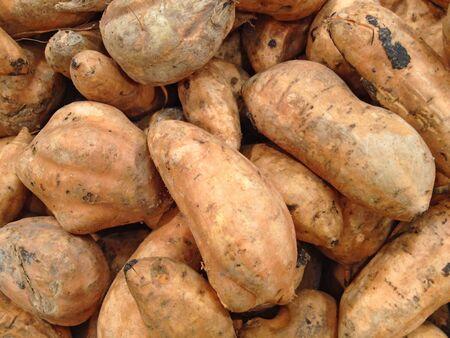 Sweet peruvian potato. Camote photo