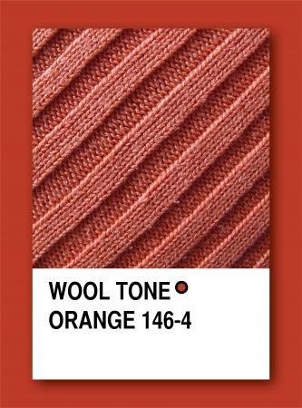 WOOL TONE ORANGE. Color sample design photo