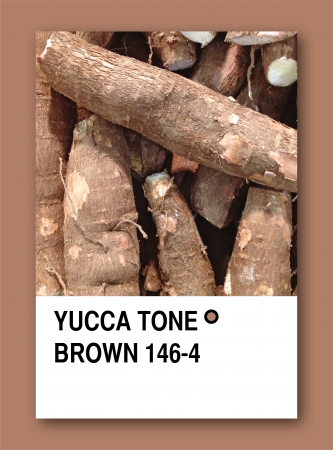 YUCCA TONE BROWN. Color sample design photo