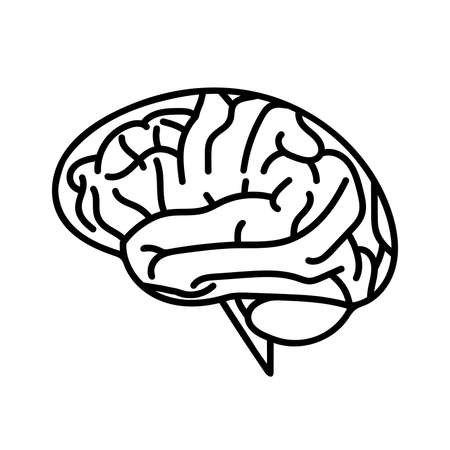 Human brain icon with thin line style. Generate ideas. Brainstorming