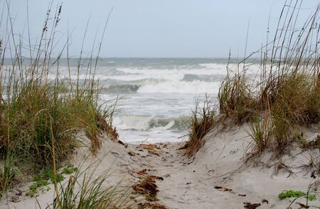 Sea Oats and surf make a beautiful frame on a rainy, overcast day in Coco Beach, Florida  Stock Photo