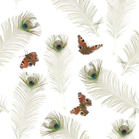 plumas de pavo real: Textura de fondo repetible con las mariposas y las plumas de pavo real fotografiado, aislado en blanco Foto de archivo