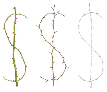Isolated dollar signs, made of thorny rose stems and one with barbwire in greyscale. It could stand for protecting money, strong currency or hard work.