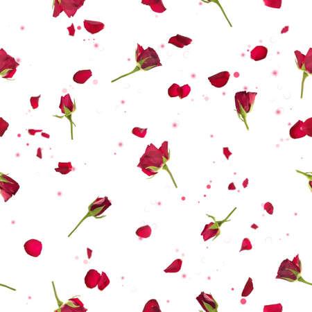 반복 비행, 스튜디오 조명에 꽃잎 빨간 장미를 촬영하고, 격리 된 흰색에 나뭇잎 입자, 스톡 콘텐츠 - 13724998