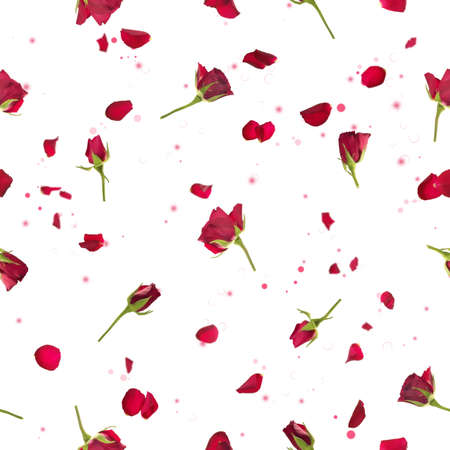Repeatable flying, studio photographed red roses with petals, on a backlight, and bokeh particles, isolated on white