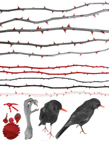 Thorny design elements of rose lines, birds, a claw, a color splash and drops in grey scale with red accentuation.