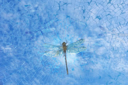 A Dragonfly breaks out to the liberty of the sky, through shattering glass, with glass made dragonflies surrounding him Stock Photo - 13880645