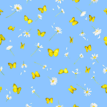 Repeatable background of 22 different daisies and yellow butterflies from 14 different angles, all studio photographed and isolated on blue