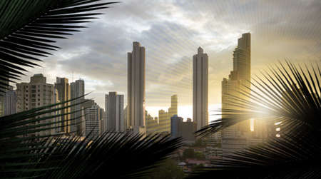 Panoramic view of the skyscrapers of the panama city in south america, through silhouettes of palm leaves and added, slight sun lines, to adapt the similar form of the leaves.