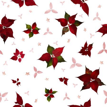 compostion: seamless christmas star flower, poinsettia, in studio photographed back light, with variations and structured stars and leaves between them, in depth of field, isolated on white