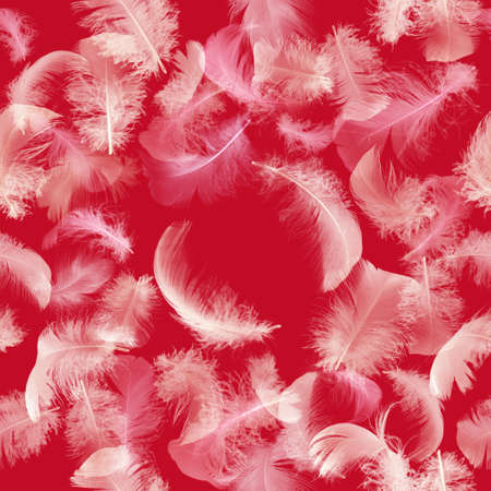 seamless white feathers, layered with transparency, isolated on red