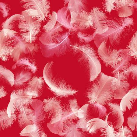 piuma bianca: piume bianche senza soluzione di continuità, a strati con trasparenza, isolato sul rosso Archivio Fotografico