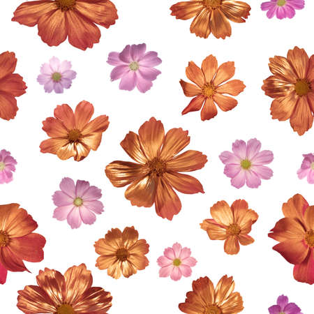 seamless, partially gilded, pink, real flower buds for christmas background, with depth of field, isolated on white Stockfoto