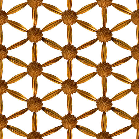 seamless flower of life pattern, made of a gilded, studio photographed, real flower, on a grid, isolated on white