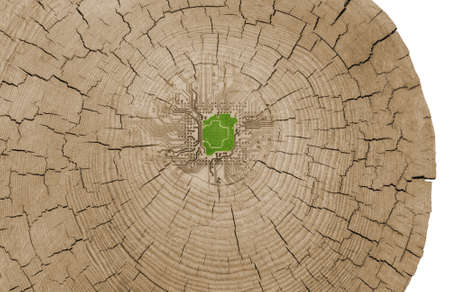 green technology concept, with a green chip on circuit lines, blended into inner tree circles photo