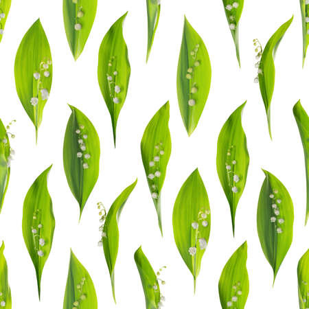 mayflower: seamless spring pattern, the mayflower, convallaria majalis, in 8 different variations, studio photographed and isolated on white Stock Photo