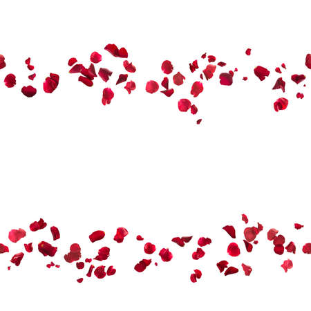repeatable, hovering red rose petal lines, studio photographed and isolated on white Stock Photo