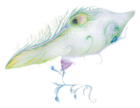 it is isolated: peacock carnival mask, color pencil drawing with photographed feathers layered in it, isolated on white Stock Photo