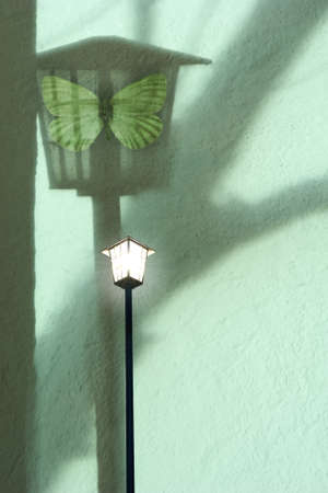 causing: night street lamp causing a shadow on a wall where a moth is sitting inside Stock Photo