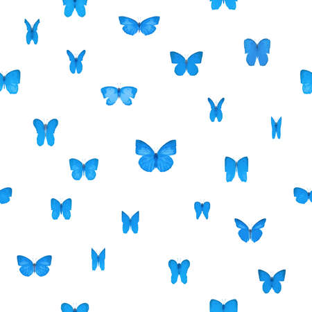 lycaenidae: repeatable lycaenidae blue butterflies with symmetric wings studio photographed in 24 different angles and isolated on absolute white Stock Photo