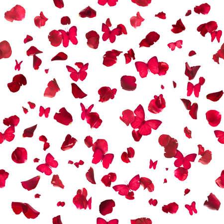 mariposas volando: , Mariposas rojas repetibles y pétalos de rosa, estudio fotografiado y aislado en el blanco absoluto Foto de archivo