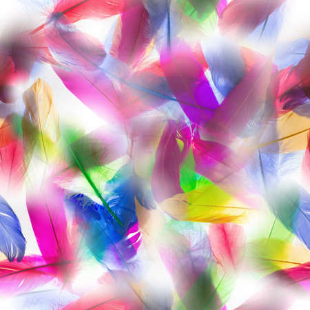 vivid: colorful, seamless feathers pattern, in backlit transparency Stock Photo