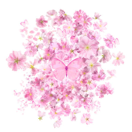 Giapponese fiori di sakura ciliegio in una mascherina trasparente, con un gruppo di farfalle rosa