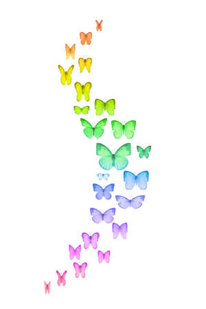 emphasis: Curved group of rainbow colored butterflies with on emphasis on the wings movement
