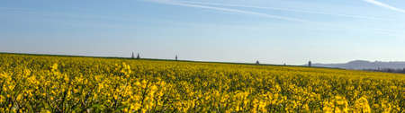 Panorama of the Tower Tops of the City of Rothenburg, viewed from a Rapeseed hill, in Bavaria, South Germany Stock Photo