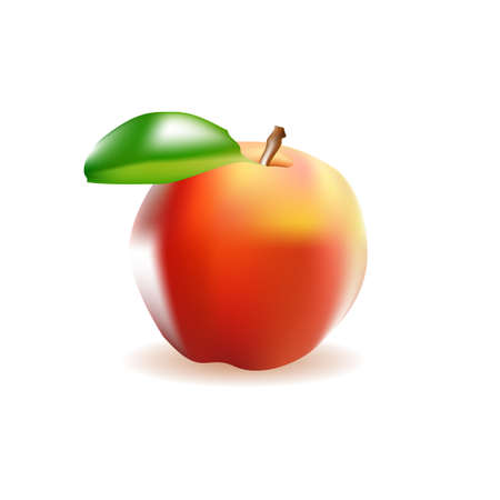 realism: illustration apple realism