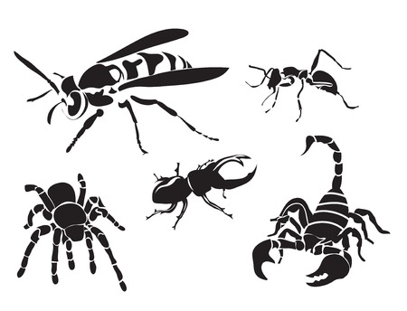 wasps: set of insect silhouettes isolated on white