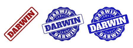 DARWIN grunge stamp seals in red and blue colors. Vector DARWIN marks with grunge texture. Graphic elements are rounded rectangles, rosettes, circles and text tags. Illustration