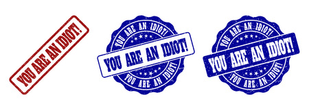 YOU ARE AN IDIOT! grunge stamp seals in red and blue colors. Vector YOU ARE AN IDIOT! signs with grunge effect. Graphic elements are rounded rectangles, rosettes, circles and text captions.