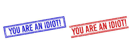 YOU ARE AN IDIOT! rubber watermarks with grunge style. Vectors designed with double lines, in blue and red variants. Word placed inside double rectangle frame and parallel lines.