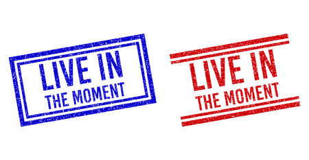 LIVE IN THE MOMENT rubber imitations with distress effect. Vectors designed with double lines, in blue and red colors. Label placed inside double rectangle frame and parallel lines.
