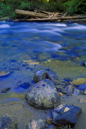 don hammond: Rocks in small creek