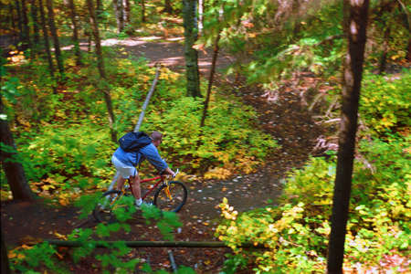 peace risk: Man cycling down forest trail