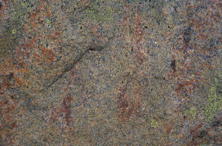 Stone with spots of lichen