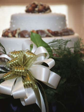 darren greenwood: Closeup of bow in front of wedding cake