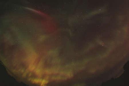carson ganci: Brilliant northern lights, Alberta Canada