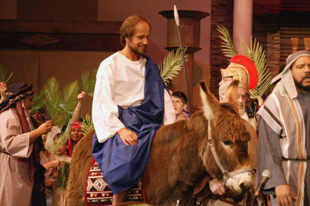 palm sunday: Palm Sunday
