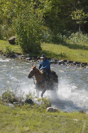 carson ganci: Cowboy rides horse