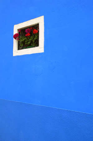 carson ganci: Flowers on window sill of a colorful home on the Island of Burano, Venetian Lagoon, Italy