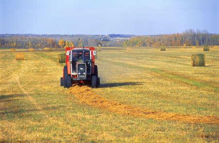 corey hochachka: Heavy machinery makes bales of hay Stock Photo