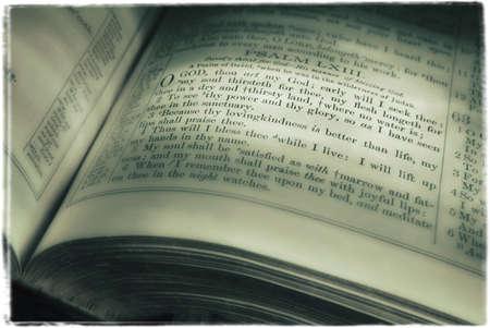 glubish: Book of Psalms