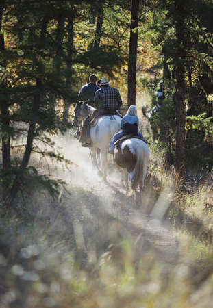 Trail riding Stock Photo - 6213687