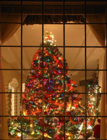 window curtains: Christmas tree Behind Windowpane, full  shot Stock Photo